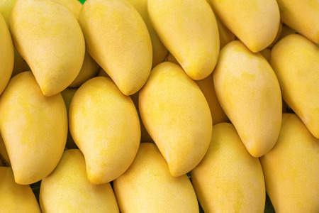시장에 노란색 망고의 근접 촬영 - 태국의 이국적인 과일 스톡 콘텐츠 - 26374572