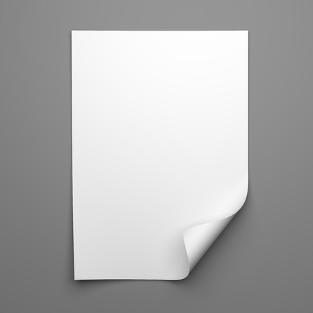Blank empty sheet of white paper with curled corner on grey background