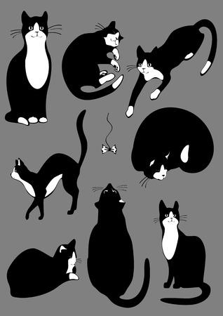 Der komplette Satz von Katzen der schwarzen Farbe. Vektorgrafik