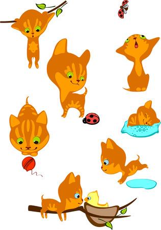 pelota caricatura: El conjunto completo de alegres gatitos rojos 2
