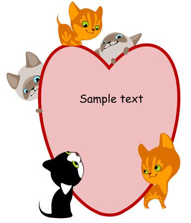 chatons différents. Entendre de la place pour votre texte. similaire au portefeuille Banque d'images - 8789065