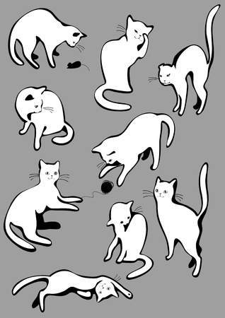 The complete set of white cats  Vector