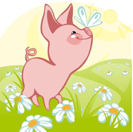 idzie: pig goes on a flower meadow. similar to the portfolio Ilustracja