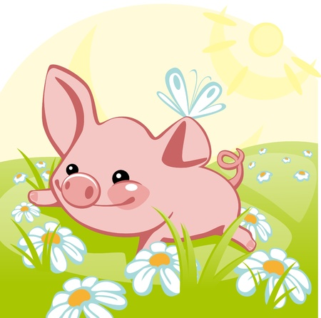 pig lying on a flower meadow. similar to the portfolio Vector