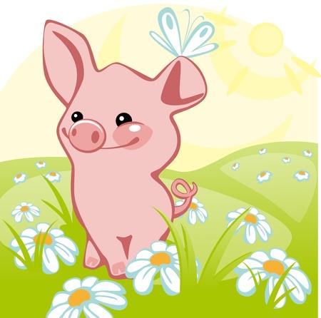 gentillesse: porc se dresse sur un pr� de fleurs. similaire au portefeuille Illustration