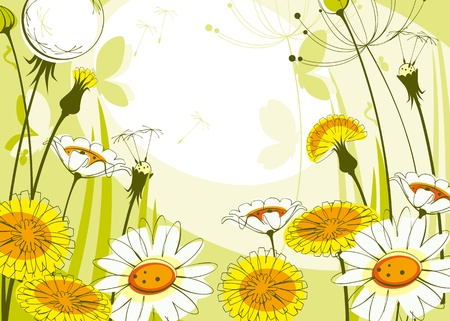 postcard with daisies and dandelions. Similar to portfolio Stock Vector - 9305031