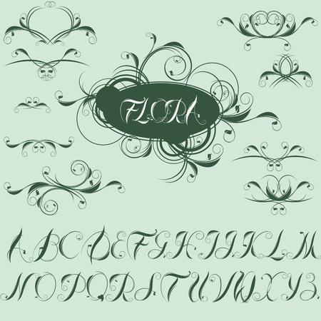calligraphic design elements and alphabet. Stock Vector - 9305042