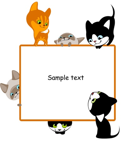 preschool poster: different kittens. Place for your text. horizontal