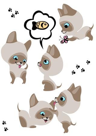 The complete set of cheerful Siamese kittens 3. Similar in a portfolio Stock Vector - 9305048