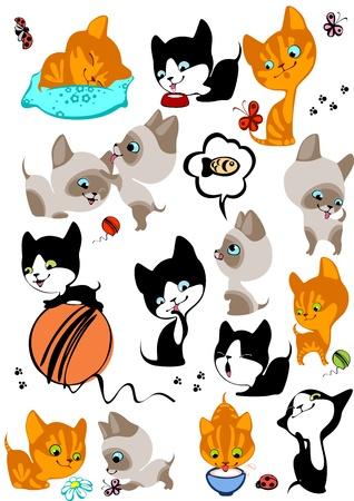 gato caricatura: El conjunto completo de diferentes gatitos alegres. Similares en una cartera