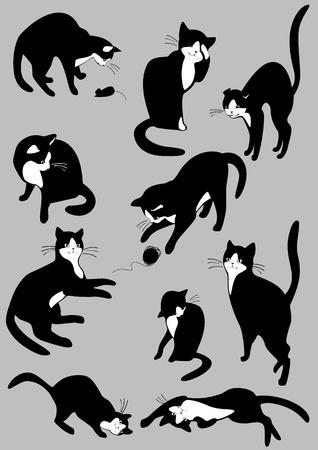 gato negro: El conjunto completo de gatos 2. similar a la cartera