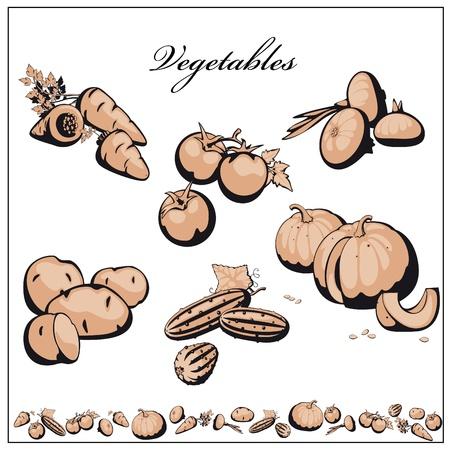 potato: set vegetables