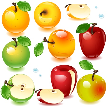 apple slice: set of different varieties of apples isolated on a white background Illustration