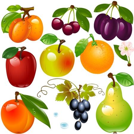 fruit drink: insieme di diversi frutti isolato su uno sfondo bianco Vettoriali