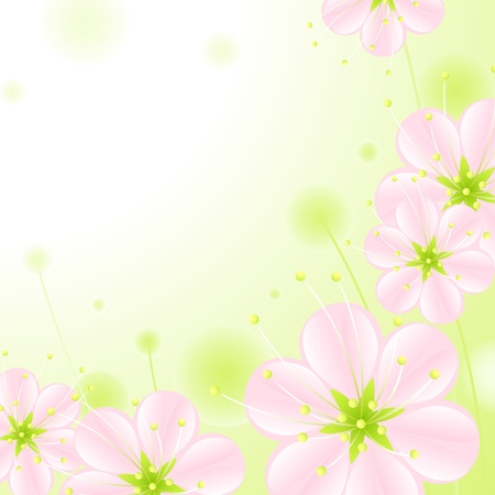 set of pink blossoms on a green background 2. Vector