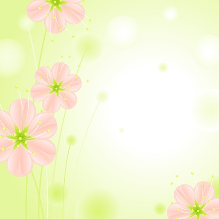 set of pink blossoms on a green background 3. Vector