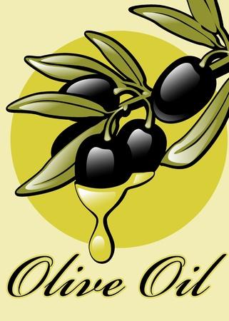 labels for Olive Oil. similar to the portfolio Illustration