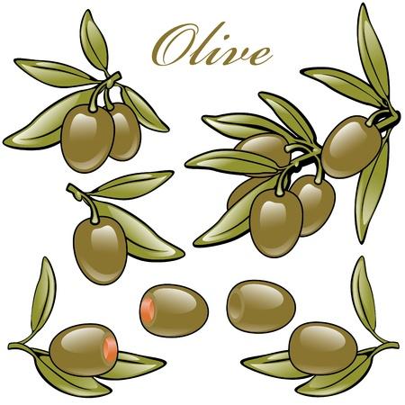 pitted: set isolato di olive verdi. con pietre, snocciolate, ripieni e su un ramo. Vettoriali