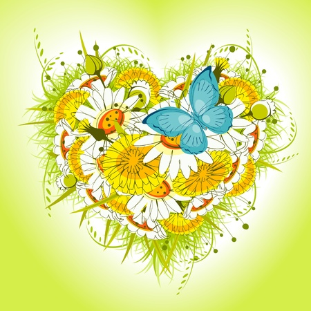 Flower heart of daisies and dandelion, with  butterfly on a green background. valentine card. Vector