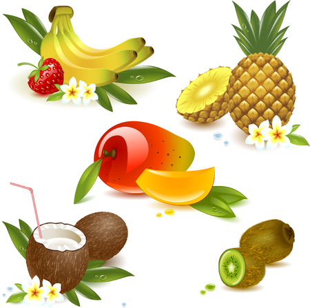 set tropical fruits isolated on the white. Vector illustration