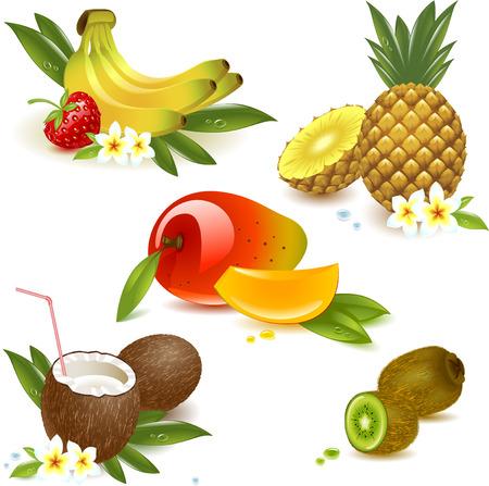 mango: ustawić owoce tropikalne samodzielnie na biały. Ilustracji wektorowych
