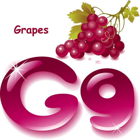 Alphabet. English capital and uppercase letter G, stylized color of grapes juice. bunch grapes with leaf. vector illustration