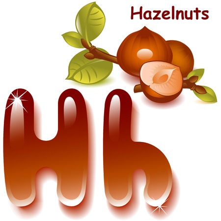 cobnut: Alphabet. English capital and uppercase letter H, stylized color of hazelnut. hazelnut with shell and half nuts. vector illustration