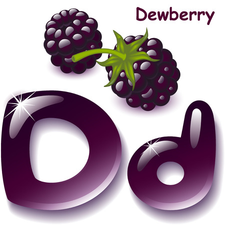 dewberry: Alphabet. English capital and uppercase letter D, stylized color of dewberry juice. dewberry berry. vector illustration