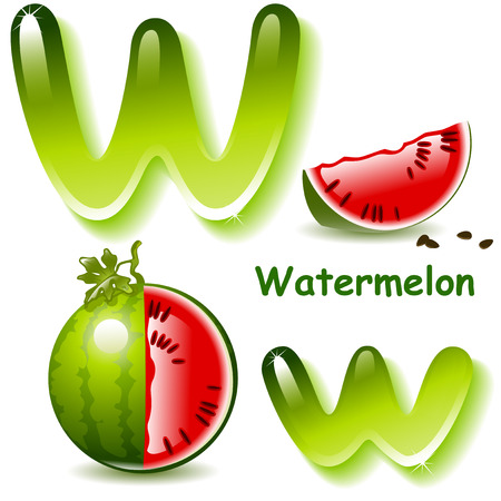 watermelon juice: Alphabet. English capital and uppercase letter W, stylized color of watermelon juice. watermelon and lobule. vector illustration Illustration
