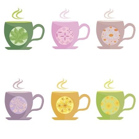 A set of tea made from herbs, mint, lemon balm, chamomile, linden and ivan tea., vector Illustration