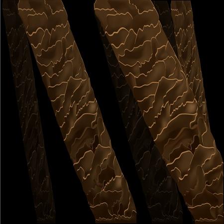 Structure anatomique des cheveux sous le microscope en gros plan. Illustration vectorielle. Poils sous la peau