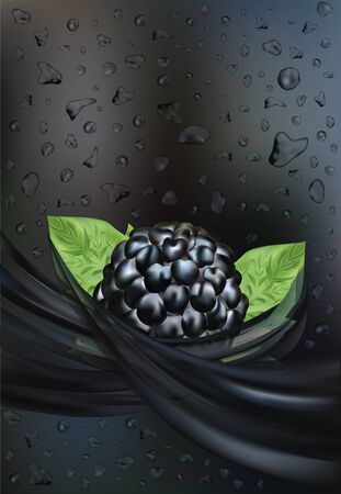 Fresh juice with blackberry. Drop juice. Fruit splashes. 3D realistic black raspberry close up. Beautiful illustration. Drink, cocktail. Vector illustration 일러스트