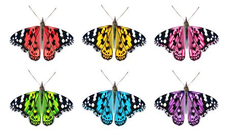 Flying colorful butterflies isolated on white background. 3D realistic beautiful butterflies. Biology. Beautiful illustration
