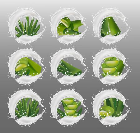 Realistic fresh aloe vera. Collection green aloe vera with splash cream. Slice Aloe. Herbal medicine for skin care and hair. Aloe vera a cactus closeup. 3d illustration.