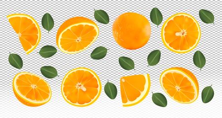 3D realistic fresh orange with green leaves.Falling orange on transparent background. Flying orange fruits are whole and cut in half. Vector illustration