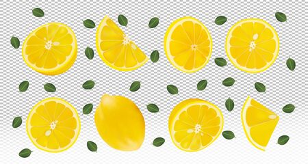 Set of fresh lemon with green leaves.Falling lemon on transparent background. Lemon rich in vitamins C. Flying lemon fruits are whole and cut in half. Vector illustration