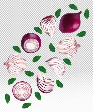 Set of red onion with leaves on transparent background. Flying red onion are whole and cut in half. 3D realistic red onion sliced, half, piece. Organic product. Vector illustration. Stock Illustratie