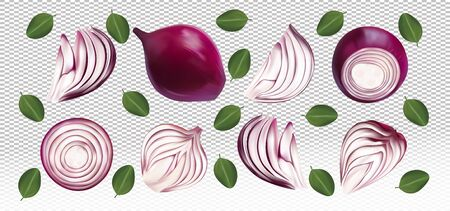 Set of red onion with leaves on transparent background. Flying red onion are whole and cut in half. 3D realistic red onion sliced, half, piece. Organic product. Vector illustration. Иллюстрация