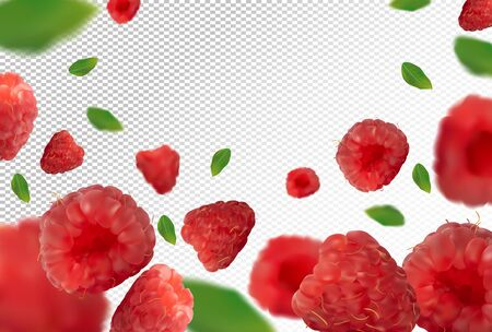 Raspberry background. Fresh raspberry with green leaf on transparent background. 3D realistic fruits. Falling raspberry. Nature product. Vector illustration. Vector illustration