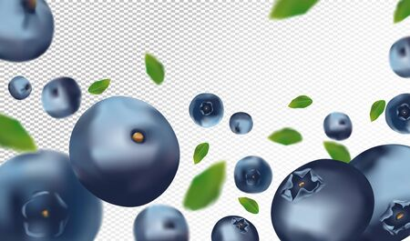 Blueberry background. Fresh blueberry with green leaf on transparent background. 3D realistic fruits. Falling blueberry. Nature product. Vector illustration.