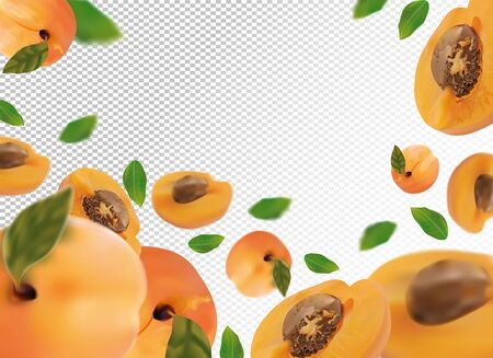 Apricot background. Fresh apricot with green leaf on transparent background. 3D realistic fruits. Falling apricot.Nature product. Vector illustration. Vector illustration Stock Illustratie
