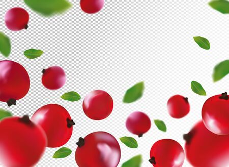 3D realistic red currant berry with green leaf. Freshly red currant berry in motion. Red currant background. Falling berry. Vector illustration