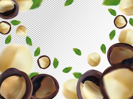 Flying macadamia with green leaf on transparent background. 3D realistic nuts. Macadamia falling from different angles. Vector illustration. Stock Illustratie