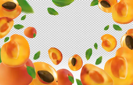 Apricot background. Fresh apricot with green leaf on transparent background. Flying apricot are whole and cut in half. Falling apricot from different angles. Nature product. Vector illustration Vettoriali