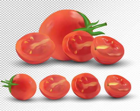 Set of tomato are whole and cut in half. Fresh tomato on transparent background. 3d realistic tomato from different angles. Nature product. Vector illustration.