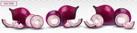 Red onion. Half, piece onion on transparent background. 3d realistic onion. Vector illustration. Ilustracja