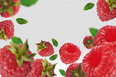 Raspberry background. Flying raspberry with green leaf on transparent background. Raspberry falling from different angles. Motion Raspberry fruits are whole. 3D realistic vector. Ilustracja