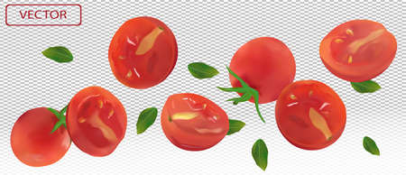 Tomato falling from different angles. Flying tomato with green leaf on transparent background. Tomato are whole and cut in half. 3D realistic tomato. Vector illustration.