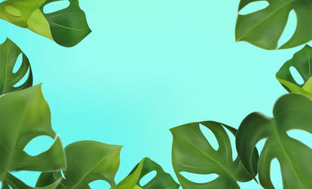 Green leaves monstera on a blue background. Banner for perfumes, cosmetic products, essential oil. Tropical leaf background and copy space for your text. Vector illustration.