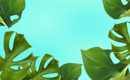 Tropical leaves on a blue background, tropical foliage monstera with split-leaf foliage that grows in the wild. Banner with botany elements, health cosmetic products, medicine.3d Vector Illustration.